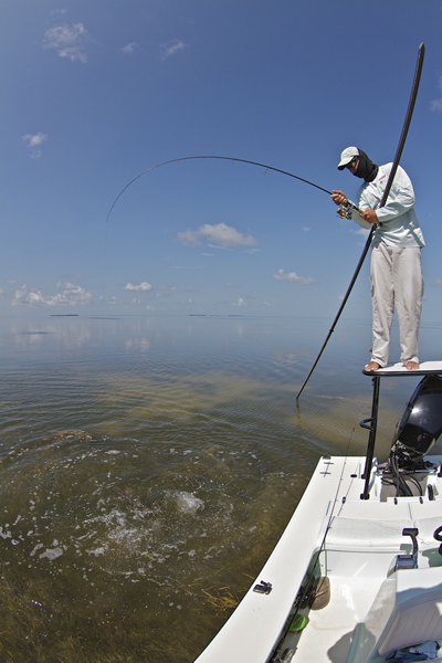 Capt. Denkert hooks up from the poling platform ©Pat Ford 2011
