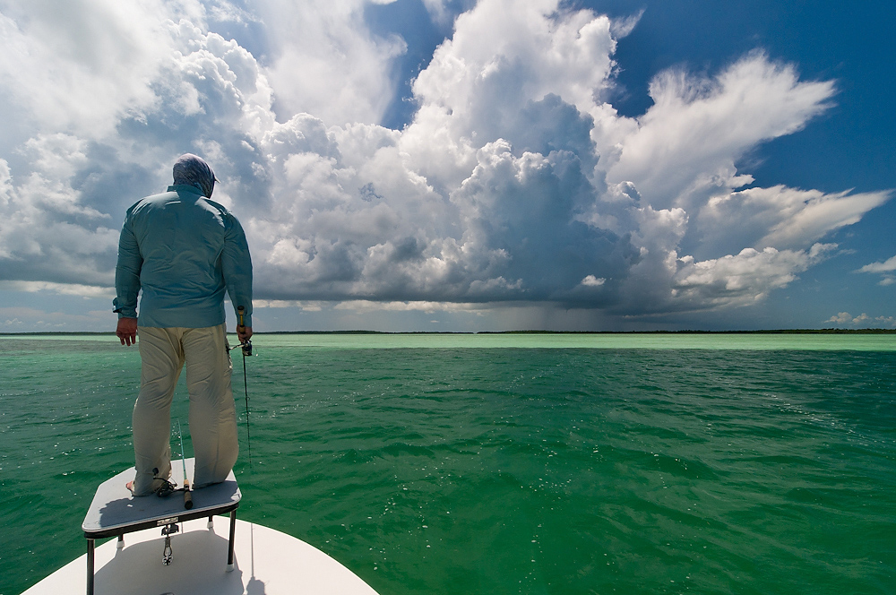 Angler Surveys the Flats ©Ross Reeder 2011